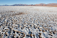 Salt flat of Maricunga, Chile. Salt flat of Maricunga in Nevado Tres Cruces national park, Chile Stock Photo
