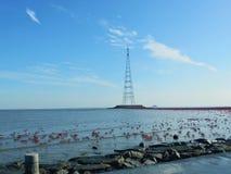 Salt flat west side sea stock images