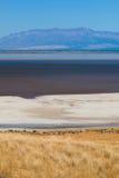 Salt flats. From Antelope Island State Park near Salt Lake City in Utah Stock Photo