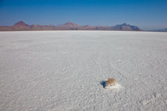Salt Flats with Mountain Royalty Free Stock Photos