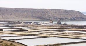 Free Salt Flats Of Janubio Royalty Free Stock Photo - 71362865