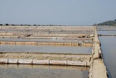 Salt Flats at Seca, Slovenia Royalty Free Stock Images
