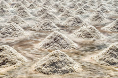 The Salt Flats of Trapani, Sicily Stock Images