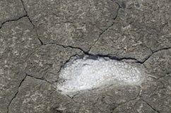 Salt footprint Stock Photos