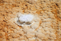 Salt formations Stock Photography
