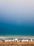 Salt Formations at the Dead Sea Royalty Free Stock Photo