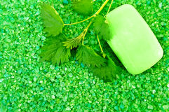 Salt of the green with soap and nettles Royalty Free Stock Photography
