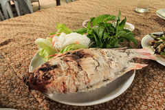 Salt grilled fish. Is local foods of thailand Stock Photography