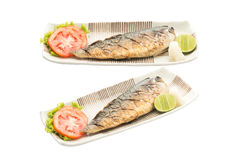 Salt-grilled horse mackerel, isolated with clipping path. Stock Photo