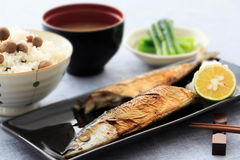 Salt-grilled Pacific Saury Royalty Free Stock Image