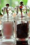 salt grinderspeppar Royaltyfri Fotografi