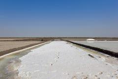 salt gujarat produktion Arkivbild