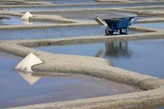 Salt harvest Royalty Free Stock Image