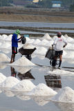 Salt Harvesting - Thailand Stock Photos