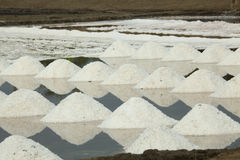 Salt Harvesting - Thailand Stock Image