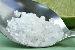 Salt hav Royaltyfri Bild