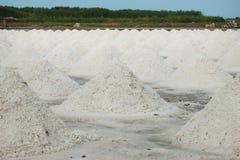 salt hav för hög Royaltyfri Foto