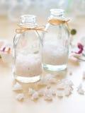 salt hav för jar arkivfoton