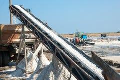 Salt hav och folk Arkivbild