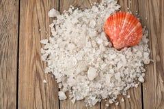 Salt hav och skal på ett trä Royaltyfria Foton