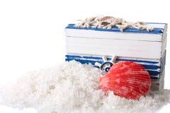 Salt hav och snäckskal Arkivbilder