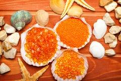 salt havsskal för aromatherapy bad Arkivfoton