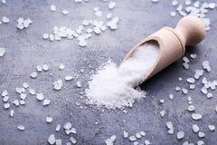 salt havswhite Royaltyfri Bild