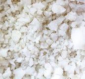 salt havswhite Arkivbilder
