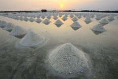 Salt heap Stock Photography