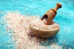 salt himalayaspink arkivbild
