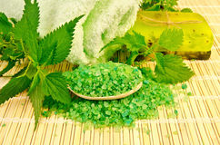 Salt and homemade soap with nettles Stock Images