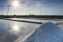 Salt industry Stock Image