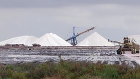 Salt industry stock video