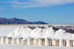 Salt industry in Salinas Grande, Jujuy Province, Argentina. Salt industry in the The Salinas Grande against a blue sky, a huge salt field in Jujuy Province royalty free stock photos