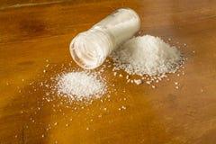 Salt jordning Arkivfoton