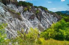 Salt kanjon Royaltyfri Bild