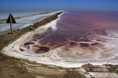 salt kommersiella pannor Arkivbild