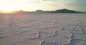 Salt kristall för gränser på ökenslätten i Utah stock video