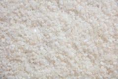 Salt kristallbakgrund för vit Royaltyfri Bild