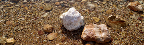 Salt kristallisering på kusten av det döda havet, Jordanien Arkivfoton