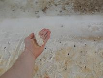 Salt kust för dött hav Arkivfoton
