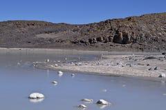 Salt lagoon. At the Atacama desert high plateau Stock Images