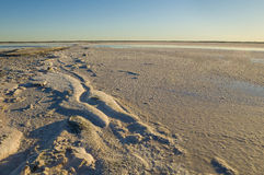 Salt lagoon, La Pampa, Stock Image