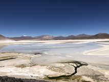 Salt lagun i Atacama, Chile Royaltyfri Fotografi