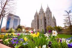 Salt Lake świątynia z pięknymi kwiatami podczas dnia Zdjęcie Stock