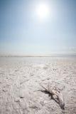 Salt Lake Stock Photo