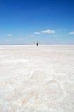 Salt lake Royalty Free Stock Images