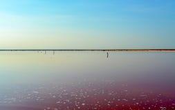 Salt lake Royaltyfria Bilder