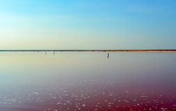 Salt lake. Abandoned salt farm in the south of Ukraine. Rose water due to the large amounts of iodine royalty free stock images