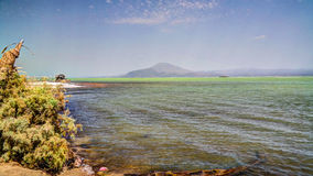 Salt Lake Afrera aka sjö Afdera eller Giulietti eller Egogi, avlägsna Danakil, Etiopien Royaltyfria Foton